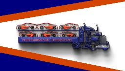 Professional Auto Transporters logo